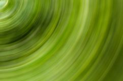 Abstract background green twisted movement whirlpool part of the fantastic base of light panel lines circle stock illustration
