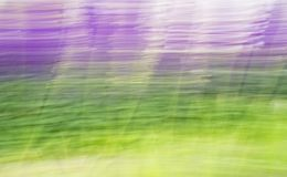 Abstract background green and violet Stock Photography