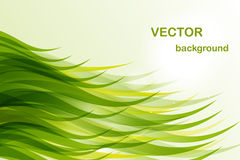 Abstract background - green wave. For design royalty free illustration