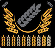 Abstract background grey wheat 3. Abstract picture of grey wheat royalty free illustration