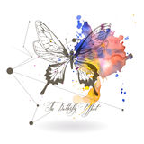 Abstract background with the image of a butterfly. The Butterfly Effect - a calligraphic inscription Stock Photography