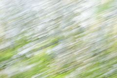 Abstract background image of white blossom flowers with a motion. Abstract background image of white blossom flowers with motion blur effect Royalty Free Stock Photos