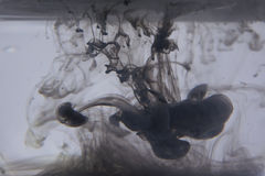 Abstract background of ink in water. Beautiful ink splash in water Stock Images
