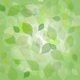 Abstract background of  leaves Stock Photography