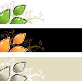 Abstract background with leaves. Vector illustration Stock Photos