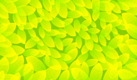 Abstract background from the leaves. Vector illustration Stock Image