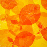 Abstract Background with Lemons Royalty Free Stock Images