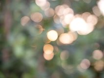 Abstract background lights bokeh stock images