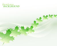 Abstract background with lines and leaves. EPS10 vector illustration Royalty Free Stock Photos