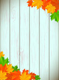 Abstract background with maple leaves. And blue wooden wall, vector illustration, eps 10 with transparency royalty free illustration
