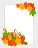 Abstract background with maple leaves and pumpkins Royalty Free Stock Image