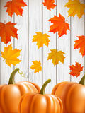 Abstract background with maple leaves and pumpkins. Abstract background with maple leaves, pumpkins, and blue wooden wall, vector illustration, eps 10 with Royalty Free Stock Photo