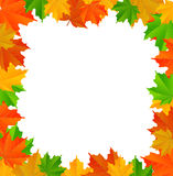 Abstract background with maple leaves. Vector illustration, eps 10 with transparency Stock Images