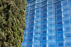 Abstract background of modern architecture and tree Stock Image