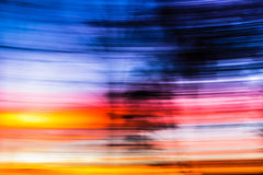Abstract Background moving tree sunset. This is a tree in my backyard, covered in sunset beams, with blue hour light topping it off Stock Images