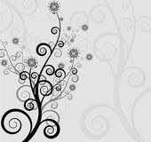 Abstract background of the nature, nature flowers. Collection abstract a backgrounds - silver flowers Stock Photos