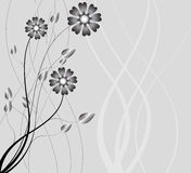 Abstract background of the nature, nature flowers. Collection abstract a backgrounds - silver flowers Royalty Free Stock Photo