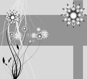 Abstract background of the nature, nature flowers. Collection abstract a backgrounds - silver flowers Royalty Free Stock Photography