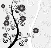 Abstract background of the nature, nature flowers. Collection abstract a backgrounds - silver flowers Royalty Free Stock Photos