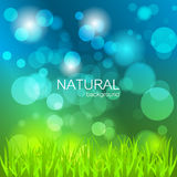 Abstract  background with nature theme Royalty Free Stock Image