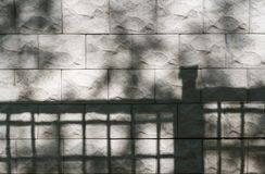 Free Abstract Background Of Textured Stone Wall With Shadows Of Trees And Fence On It. Royalty Free Stock Photo - 114479715