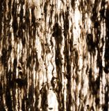 Abstract background of old rags. Photo of an abstract texture Royalty Free Stock Images