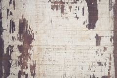 Abstract background old white hardwood texture. For design Royalty Free Stock Images