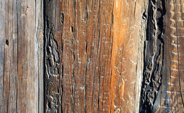 Abstract background with old wooden wall Royalty Free Stock Photo