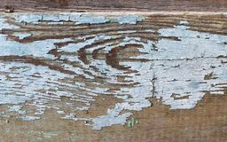 Background of wooden plank texture wall with selected tone color. Abstract background of an old wooden wall with a bright texture. Abstract background of an old stock image