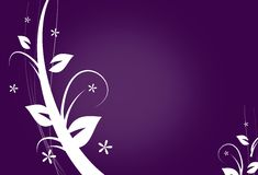 Abstract background with ornaments. Dark purple background with white floral ornaments wave Stock Photography