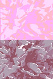 Abstract background peony flower Royalty Free Stock Photography