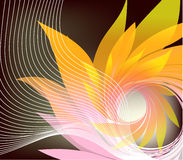 Abstract background with petal Stock Photos