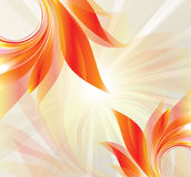Abstract background with petal Royalty Free Stock Photo