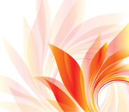 Abstract background with petal Stock Images