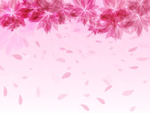 Abstract background with pink flowers and falling petals. Vector illustration royalty free illustration
