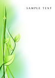 Abstract background from plants. Illustration of abstract green background from plants royalty free illustration