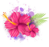 Abstract background with plumeria flowers. Abstract summer background with hibiscus flowers on colorful watercolor splash Stock Illustration