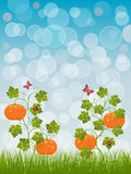 Abstract background with a pumpkin. Vector illustration vector illustration