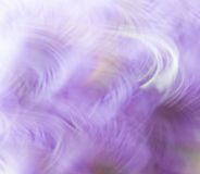 Abstract background in purple and white colors Royalty Free Stock Photography