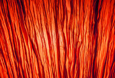 Abstract background red lighting behide transparenc fabrick Royalty Free Stock Photo