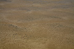 Abstract Background: Rippled Ocean Floor And Oil Royalty Free Stock Images