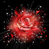 Abstract background with a rose Royalty Free Stock Photo