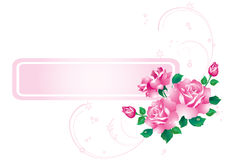 Abstract background with roses. Royalty Free Stock Images