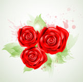 Abstract background with roses. Abstract background with bouquet of red roses Vector Illustration