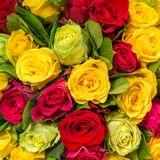 Abstract background of roses Stock Photo