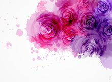 Abstract background with roses. Abstract watercolor background in purple and pink colors with roses Stock Image