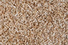 Sawdust close up Royalty Free Stock Photography