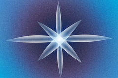 Abstract background with sea star. flower light.  Stock Photos