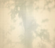 Abstract background with shadow of tree Stock Photo