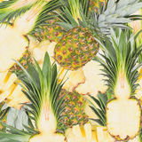 Abstract background with slices of fresh pineapple Stock Images